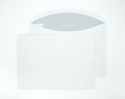 Polar Premium C5 341071