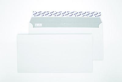 Polar Premium C5 317168