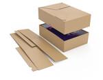 Boxes télescopiques